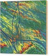 Sentinel Universe Wood Print