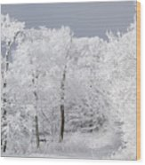 Sentinels Wood Print