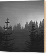 Sentinels In The Mist Wood Print