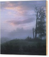 Sentinels In The Valley Wood Print