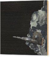 Sentran Archer Wood Print