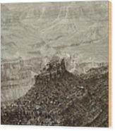 Sentry Of Centuries Wood Print