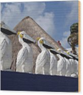 Sentry Pelicans Wood Print