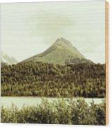 Sepia Alaska  Wood Print