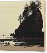 Sepia High Contrast Rialto Beach Wood Print
