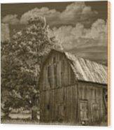 Sepia Michigan Barn Landscape Wood Print
