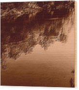 Sepia River Wood Print