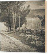 Sepia Road Wood Print