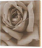 Sepia Rose Abstract Wood Print