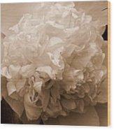 Sepia Series - Peony Wood Print