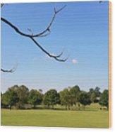 September In Deibert Park Wood Print