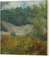September In Hyde Park Wood Print