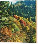 September Mountainside Wood Print