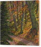 September Road Wood Print
