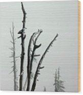 September Snow Wood Print