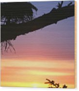Sequim Sunset Ss 2007 Wood Print