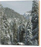 Sequoia National Park 7 Wood Print