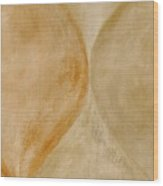 Ser.2 #10 Wood Print