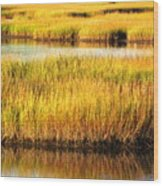 Serene Grasses Wood Print