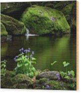 Serene Green Wood Print