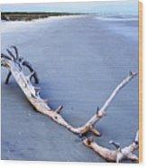 Serene Horizon Wood Print
