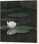 Serene In Pink Wood Print