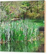 Serene Iris Wood Print