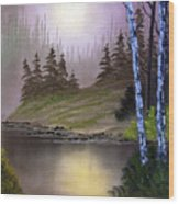 Serene Nightscape Wood Print