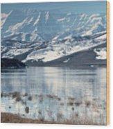 Serene Paddling Wood Print