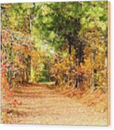 Serene Path Wood Print