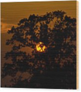 Serengeti Wood Print