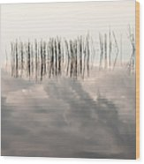 Serenity Dwells Here Where Tranquil Water Flow Cloaked  In Hues Of Love Wood Print by Jenny Rainbow
