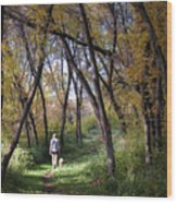 Serenity Wood Print by George Hausler