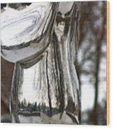 Globe Snow # 2. Wood Print