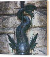 Serpent Fountain Wood Print by Doug Sturgess