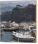 Serrento Harbour Wood Print