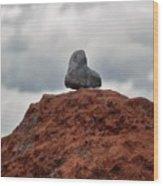 Set Upon A Rock Wood Print
