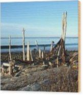 Seth's Seaside Driftwood Sculpture  Wood Print