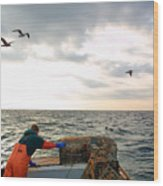 Setting Lobster Traps In Chatham On Cape Cod Wood Print