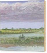 Settlelers Crossing Plain Wood Print