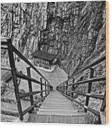 Seven Falls Pastoral Study 1 Wood Print