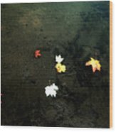 Seven Leaves At The Pond's Edge Wood Print