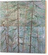 Seven  Wood Print by Rick Silas