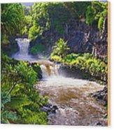 Seven Sacred Pools Maui Wood Print