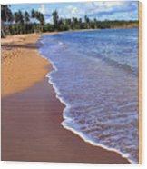 Seven Seas Beach Wood Print