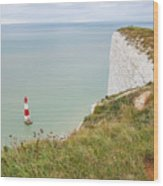 Seven Sisters Cliffs 19 Wood Print