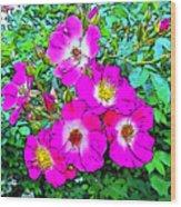 Seven Sisters Rose Variant Wood Print