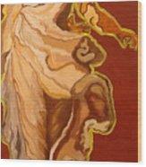 Seventeenth Portrait Wood Print