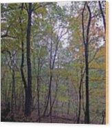 Severson Wood Print