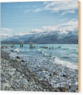 Seward Seashore Wood Print